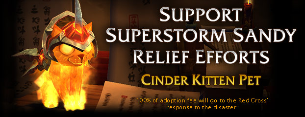 Support Superstorm Sandy Relief Efforts – Adopt a Cinder Kitten Today!